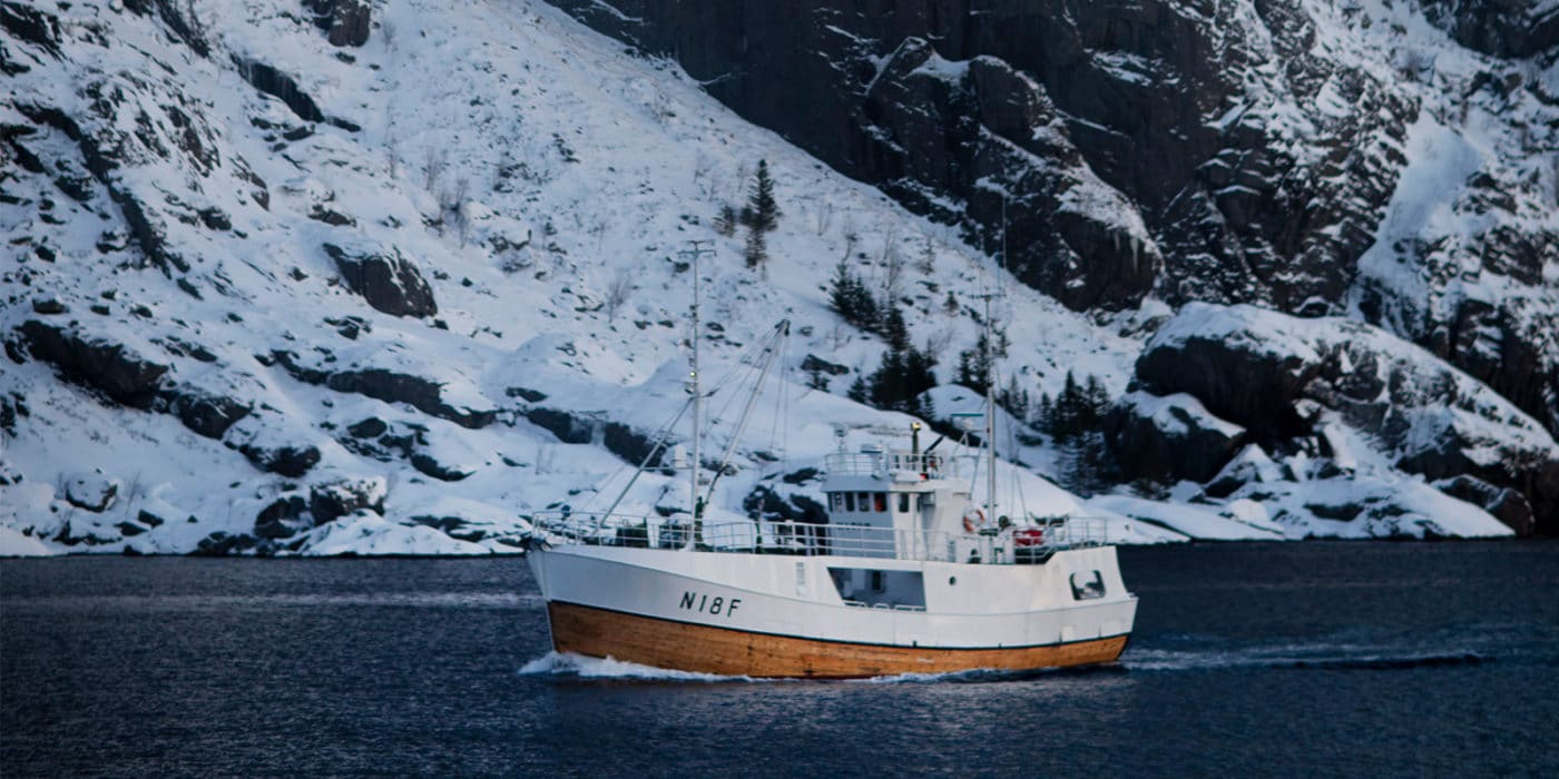 Top 5 things to do in Lofoten in the winter
